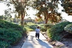 """Running off """"into the sunset"""" to play at the park"""