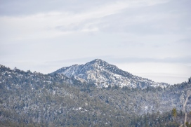 Route 243 near Mt. San Jacinto